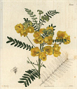 10567883