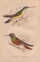 10567892