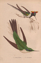 10567893