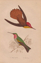 10567895