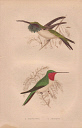 10567896