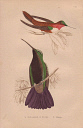 10567899