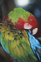 10577238