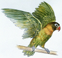 10578244