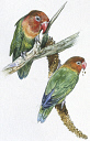 10578246