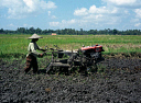 10587537