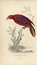 10622421