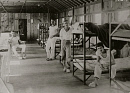 10627432