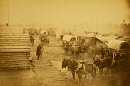 10635751