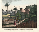 10647143
