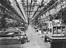 10650298