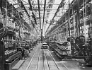 10650300