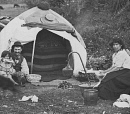 10650521