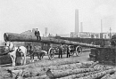 10650929