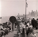 10654418