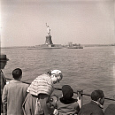 10654419