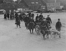 10659098