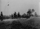 10659099