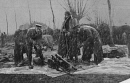 10659105