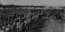 10659112