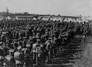 10659113