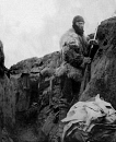 10659115