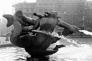 10662142