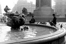 10662144