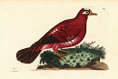 10663839