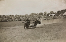 10688449