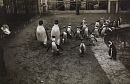10688776