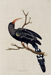10423602
