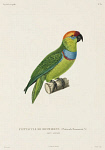 10425404