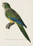 10425405