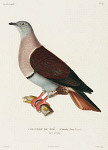 10425407