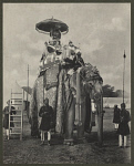 10456511