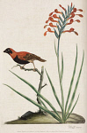 10423551