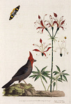 10423552