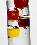 10310253