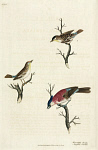 10423565