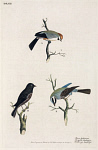 10423571