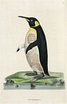 10423573