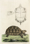 10423576