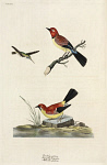 10423580