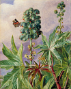 10694537