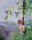 10694551