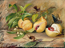 10694555