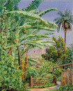 10694556