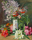10694561