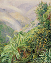 10694562